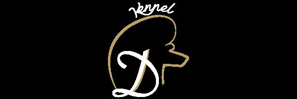 darsican logo